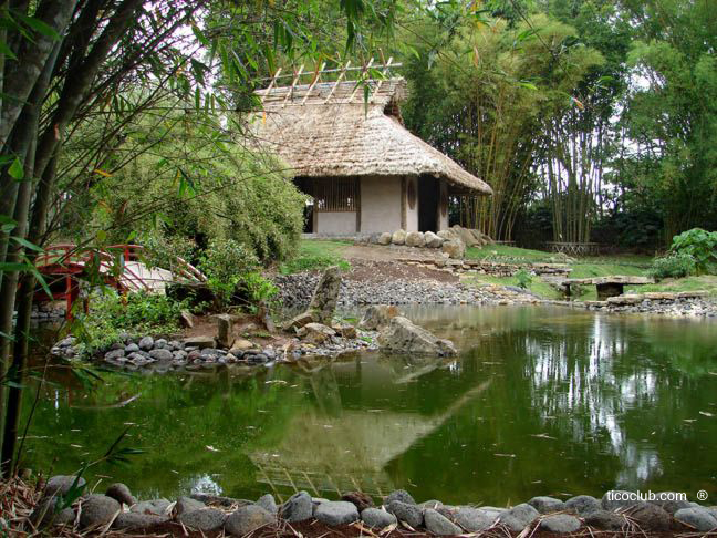 Jardin botanico lancaster costa rica for Jardines costa rica
